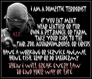 181_domestic-terrorist